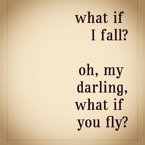 fail or fly