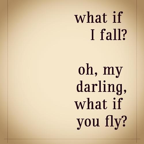 fail or fly