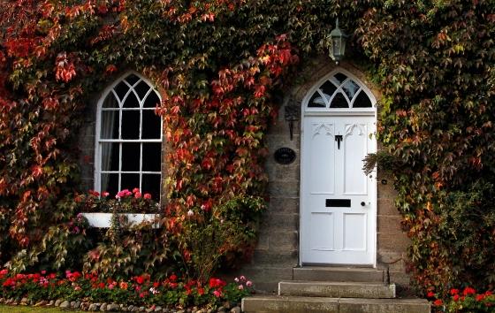 Autumn color, Ripley, England