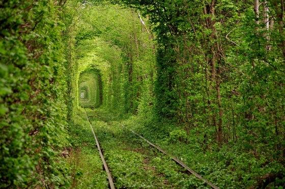 Tunnel of Love_Ukraine