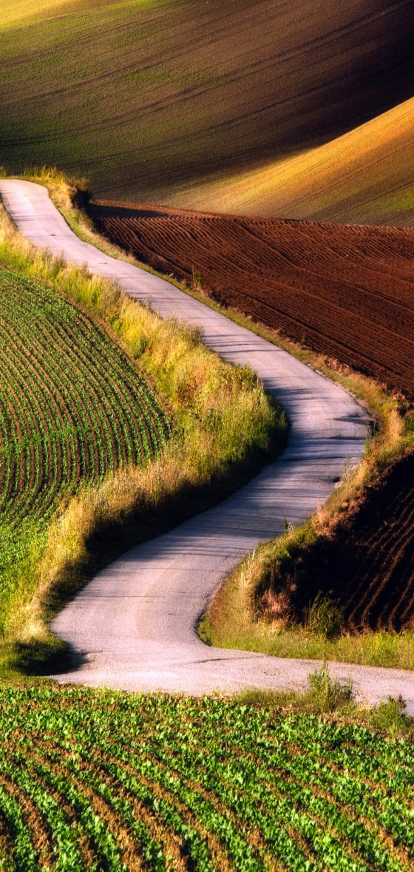 Southern Moravia, Czech Republic